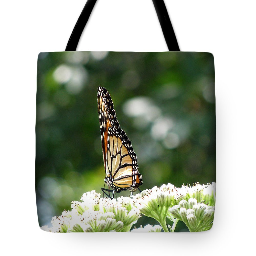 Butterfly Tote Bag featuring the photograph Monarch Butterfly 72 by Pamela Critchlow