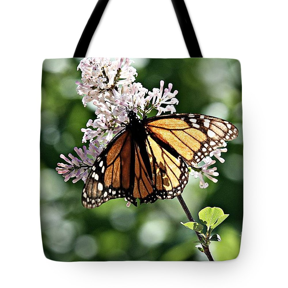 Monarch Butterfly Tote Bag featuring the photograph Monarch Butterfly by Elizabeth Winter