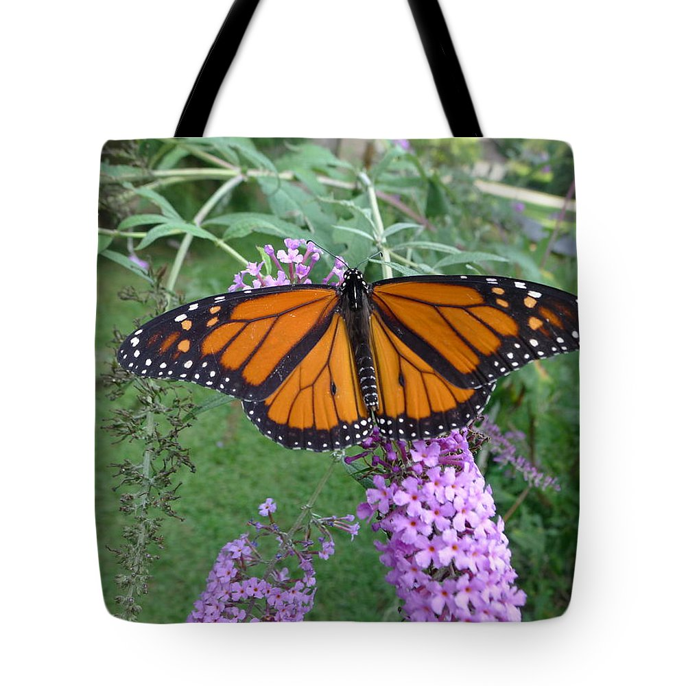 Monarch Tote Bag featuring the photograph Monarch Butterfly by Richard Reeve