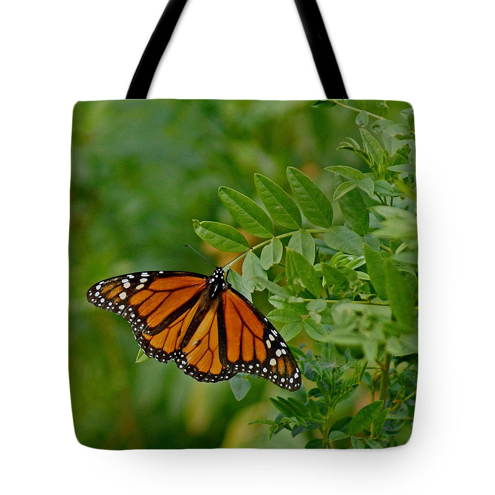 Butterflies Tote Bag featuring the digital art Monarch by Ernie Echols