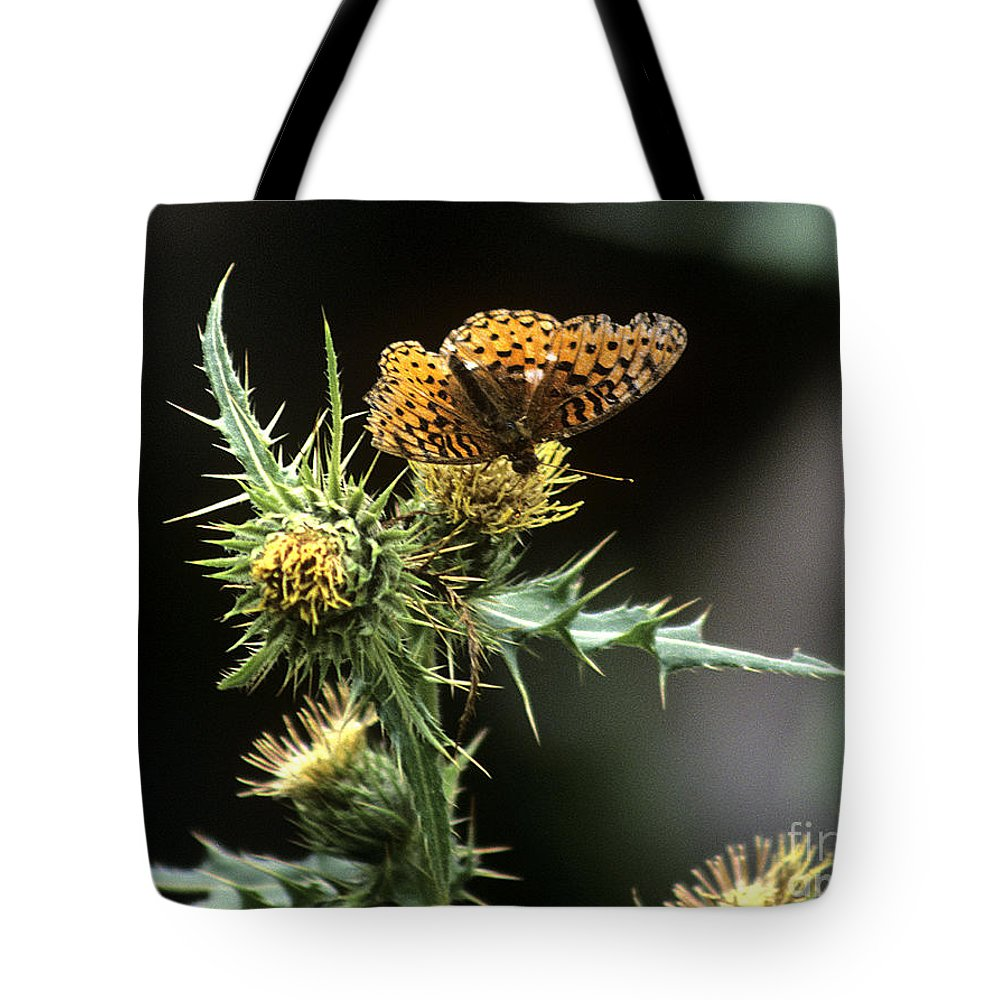 Butterfly Tote Bag featuring the photograph Monarch on Thistle by Kathy McClure