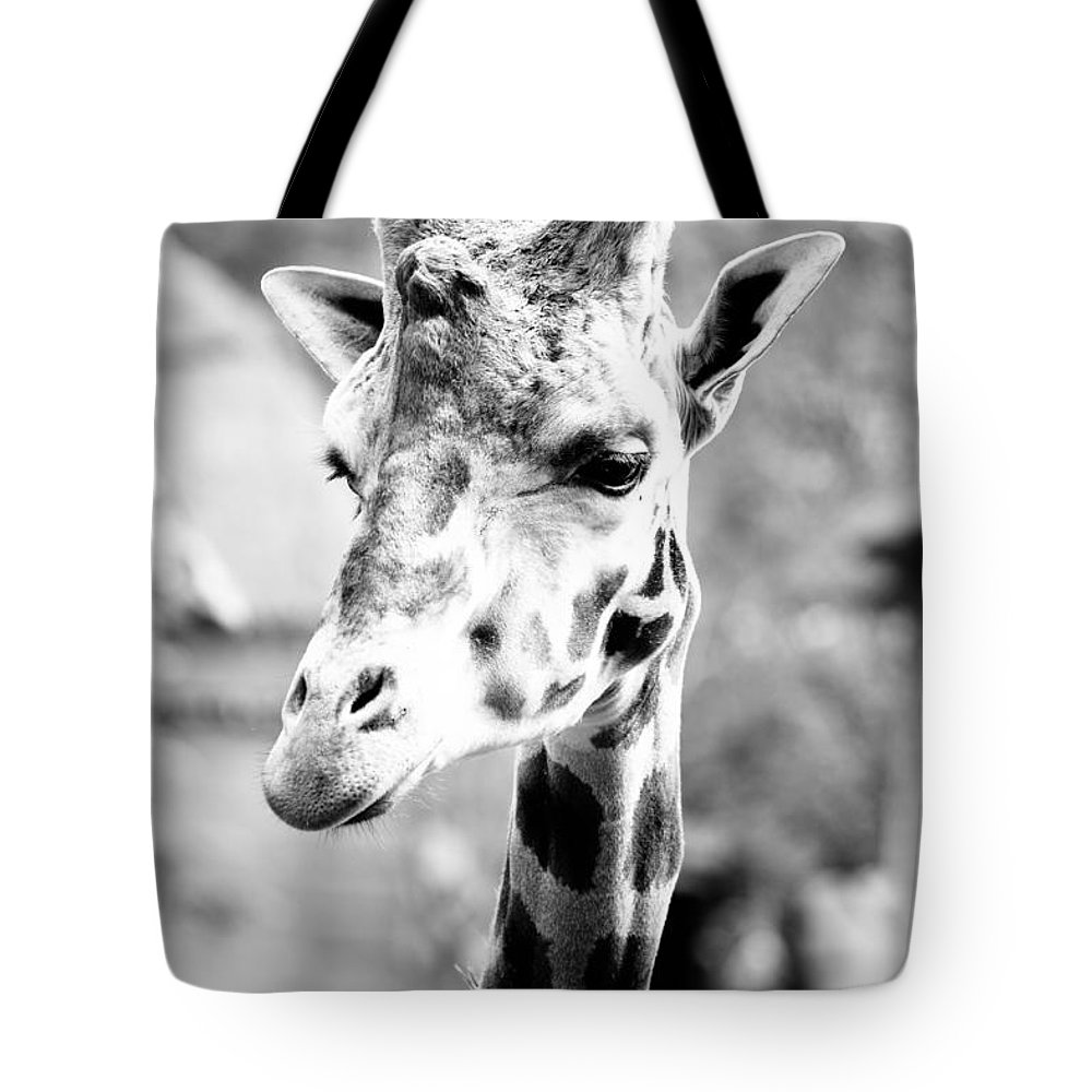 Black And White Tote Bag featuring the photograph Monochrome Giraffe Portrait by Pati Photography
