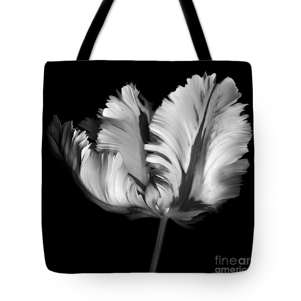 Black Tote Bag featuring the photograph Monocrhome Parrot Tulip by Oscar Gutierrez