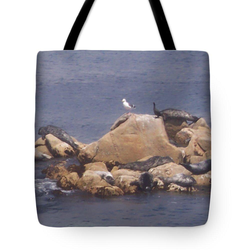 Seal Tote Bag featuring the photograph Monterey Sun Bath by Pharris Art