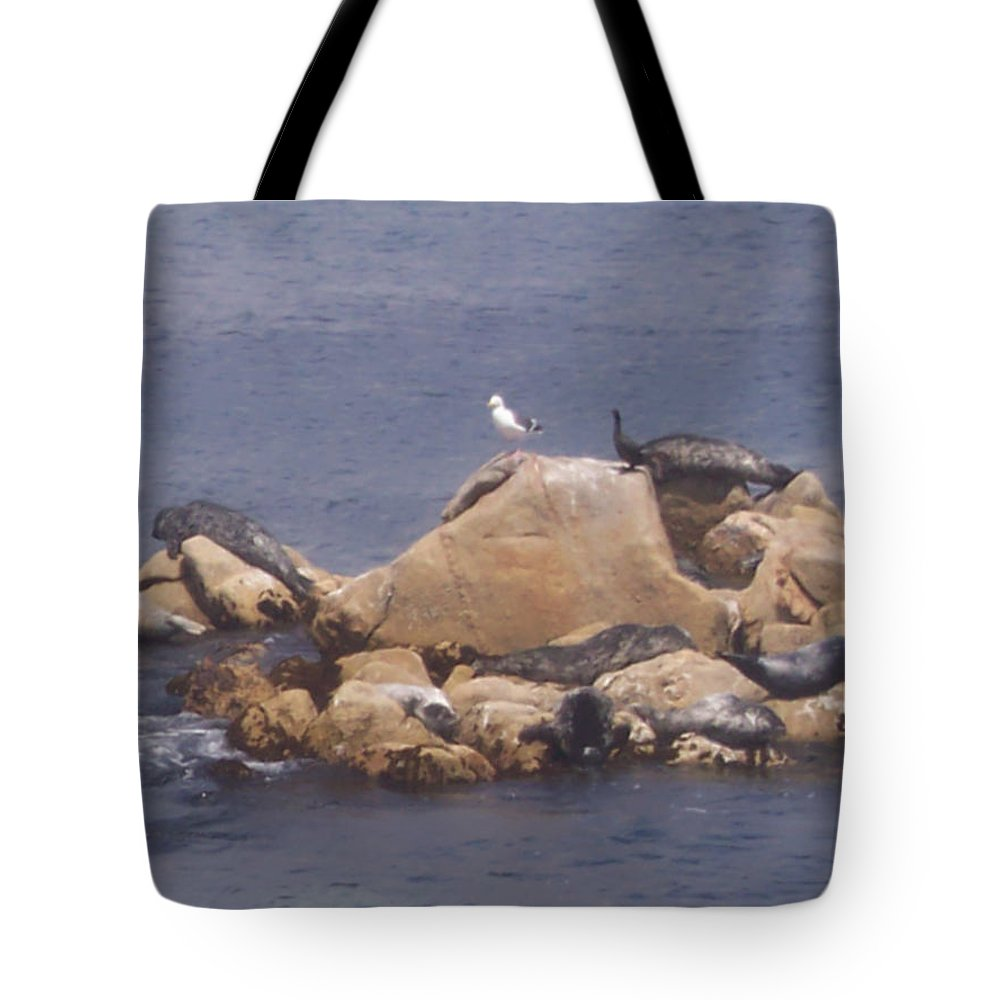 Seal Tote Bag featuring the photograph Monterey Sun Bath by Pharris Art