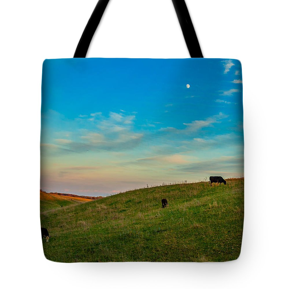 Pasture Tote Bag featuring the photograph Moo Moon by Steve Harrington