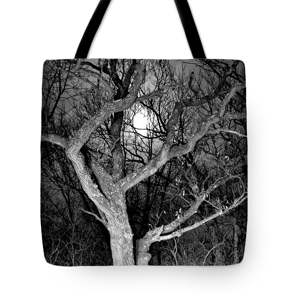 Full Moon Tote Bag featuring the photograph Moonshine 2 by Susie Loechler