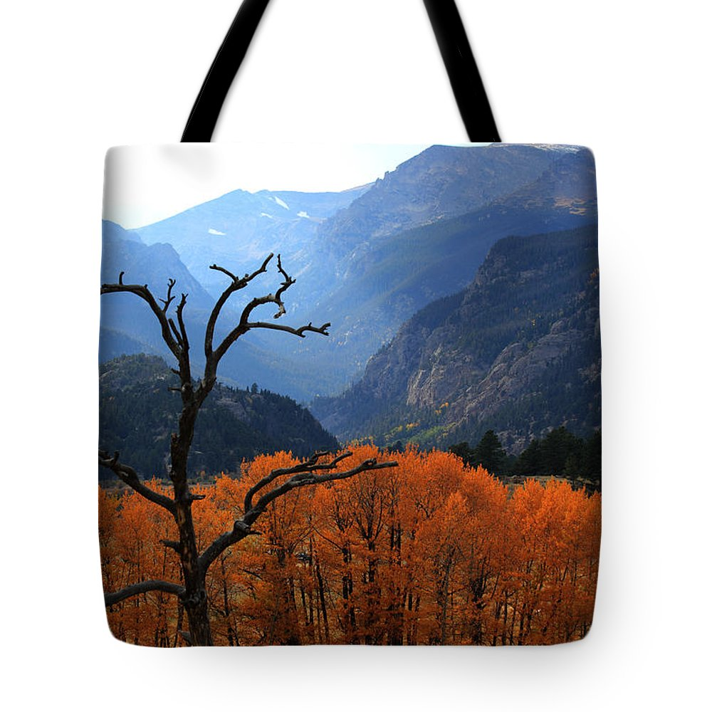 Moraine Park Tote Bag featuring the photograph Moraine Park by Shane Bechler