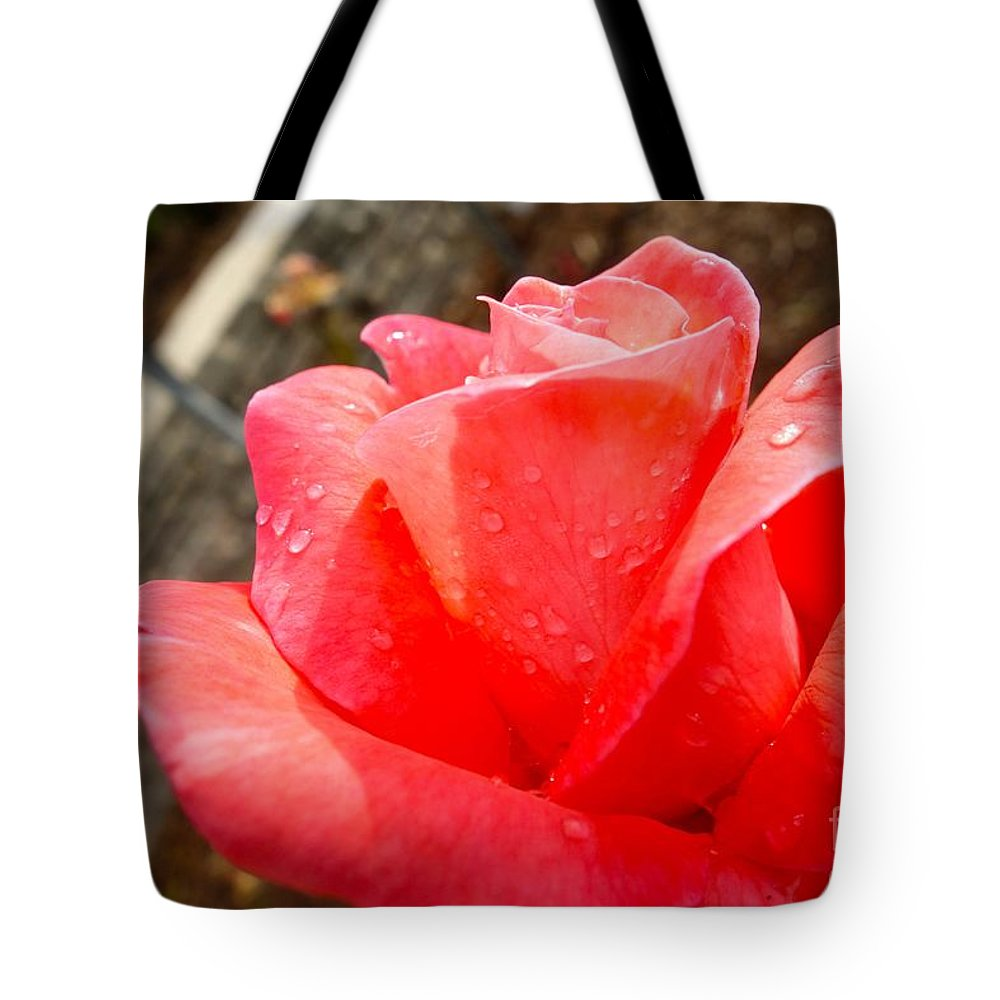Tote Bag featuring the photograph Morning Dew #9 by Jacqueline Athmann