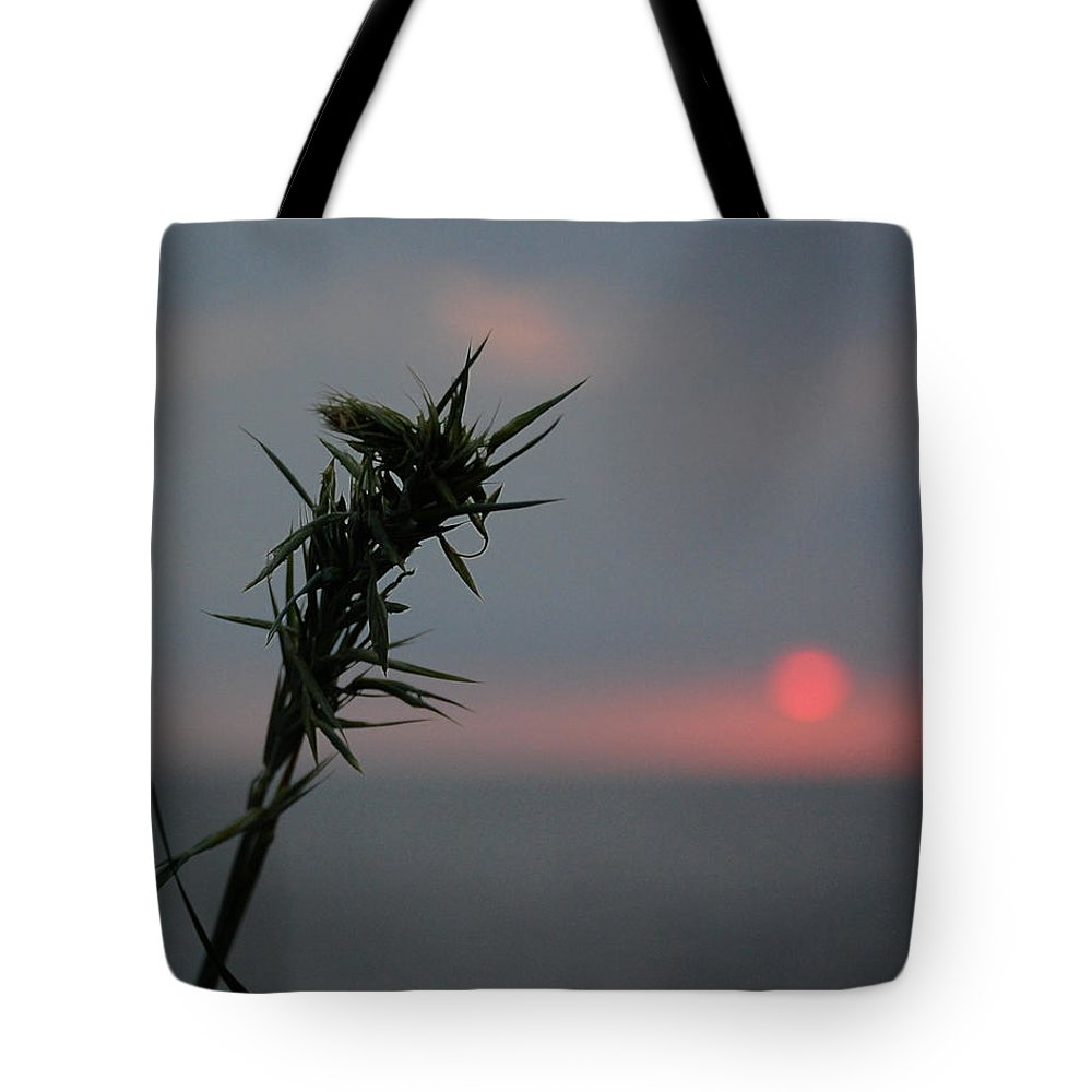 Sunrise Tote Bag featuring the photograph Morning Blade by Leticia Latocki