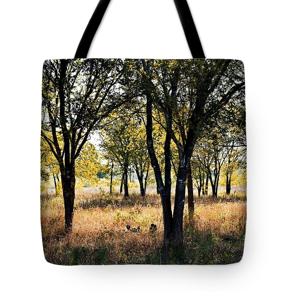 Morning Tote Bag featuring the photograph Morning Colors by Gary Richards