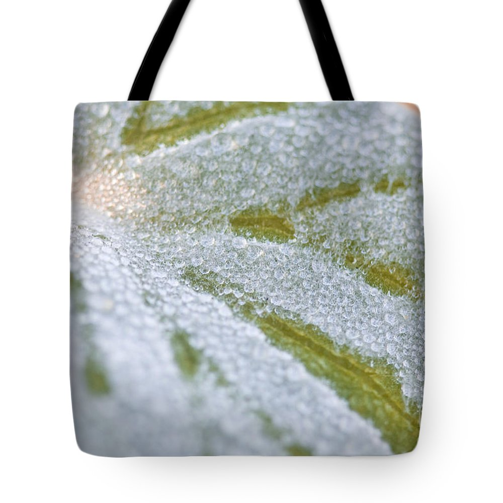 Leaf Tote Bag featuring the photograph Morning Dew by Christina Gupfinger