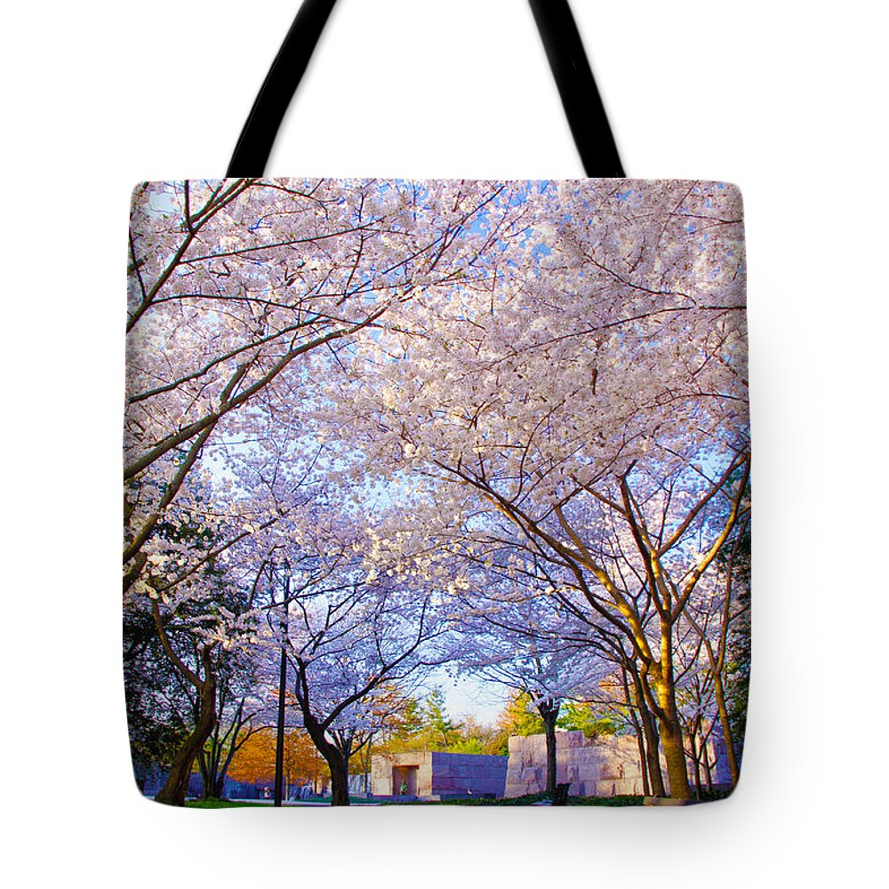 Spring Tote Bag featuring the photograph Morning Dream by Mitch Cat