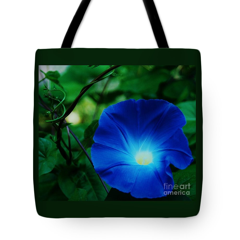 Morning Glory Art Floral Nature Macro Stock Shot Vibrant Flower Sunlit Heart Bermuda Tropical Flora Georgia Okeefe Homage Lovely Weed Canvas Print Metal Frame Poster Print Available On Greeting Cards Phone Cases Shower Curtains T Shirts Duvet Covers Pouches Throw Pillows Mugs Tote Bags And Phone Cases Tote Bag featuring the photograph Morning Glory # 2 by Marcus Dagan