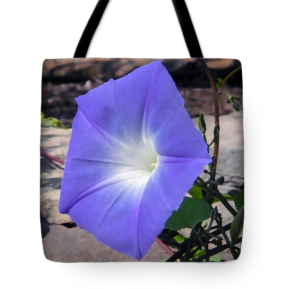 Flowers Tote Bag featuring the photograph Morning Glory by Chris Busch