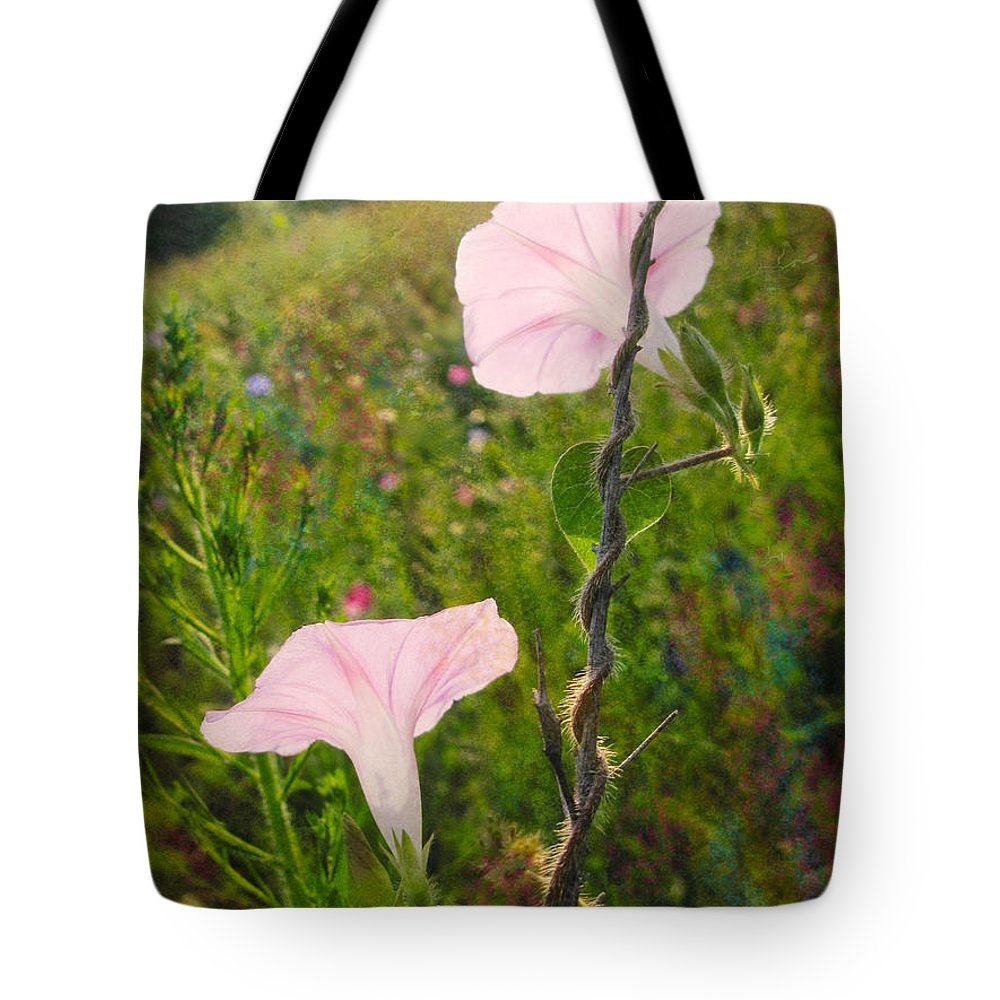 Morning Glory Tote Bag featuring the photograph Morning Glory by Melinda Fawver
