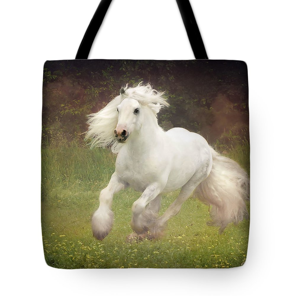 Horses Tote Bag featuring the photograph Morning Mist C by Fran J Scott