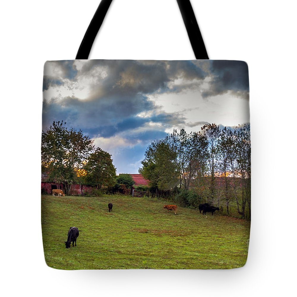 Rural Tote Bag featuring the photograph Morning On The Farm Four by Ken Frischkorn