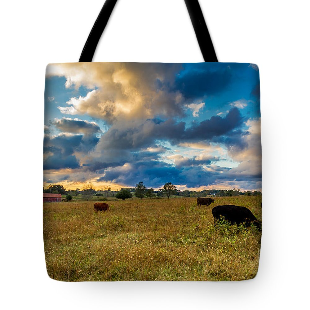 Rural Tote Bag featuring the photograph Morning On The Farm Two by Ken Frischkorn