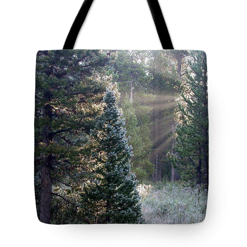Sunrays Tote Bag featuring the photograph Morning Rays by Shane Bechler