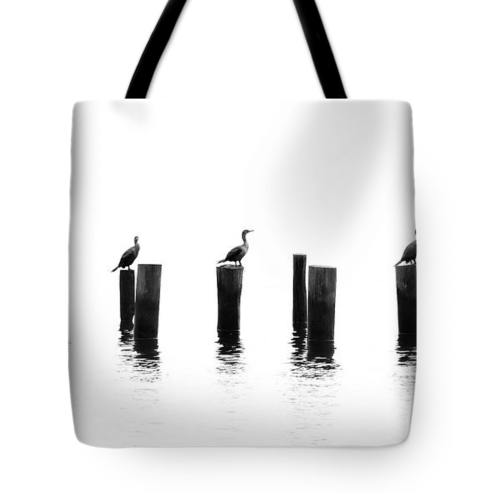 Panoramic Tote Bag featuring the photograph Morning Reflections by Chris Moore - Exploring Light Photography