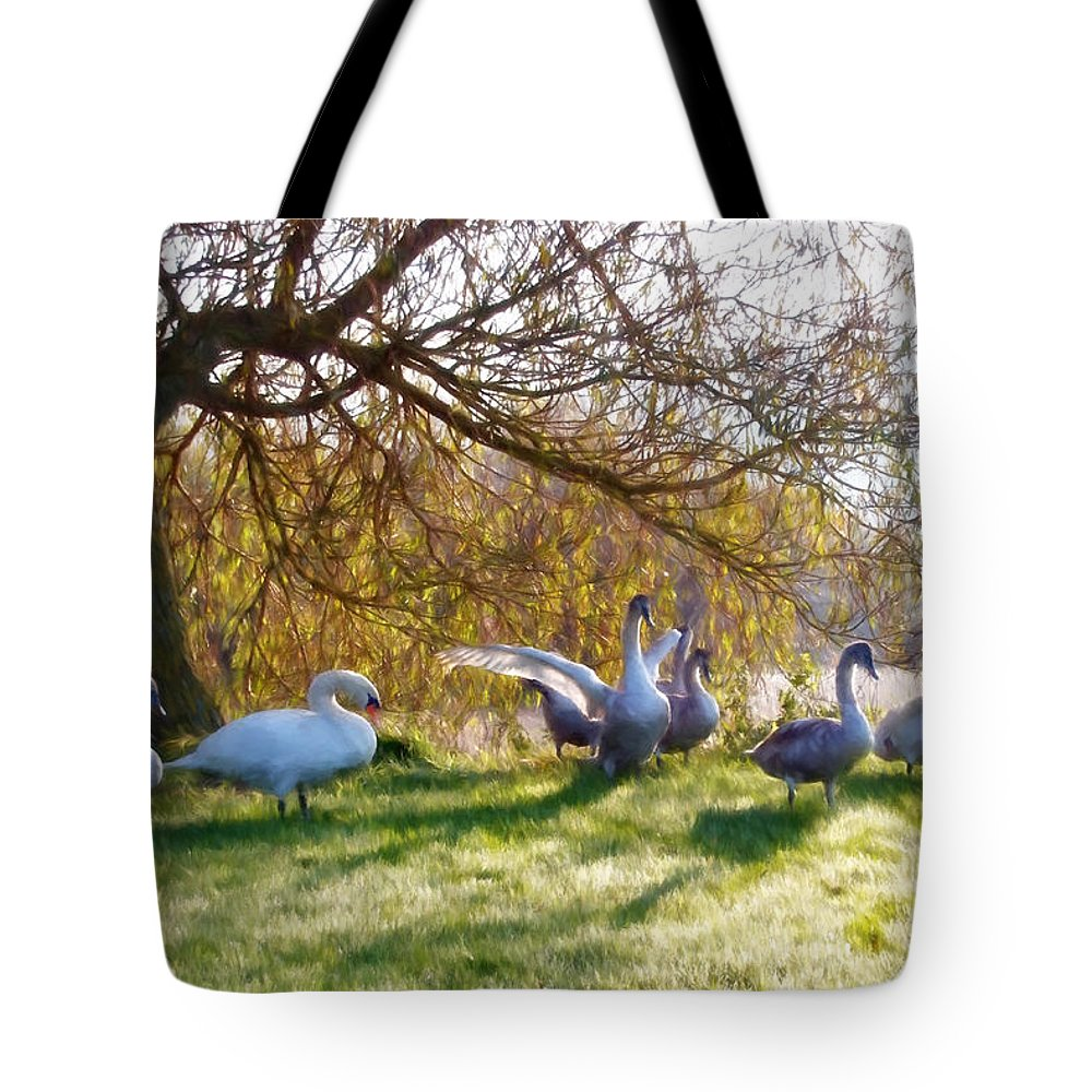 Lower-bruckland Tote Bag featuring the photograph Morning Stretch - Impressions by Susie Peek