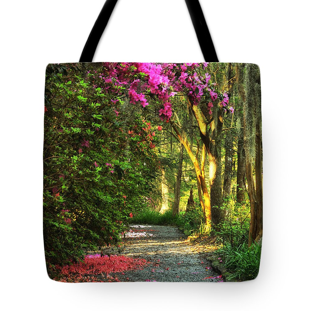 Blooming Azaleas Tote Bag featuring the photograph Morning Walk by Barbara Budzinski