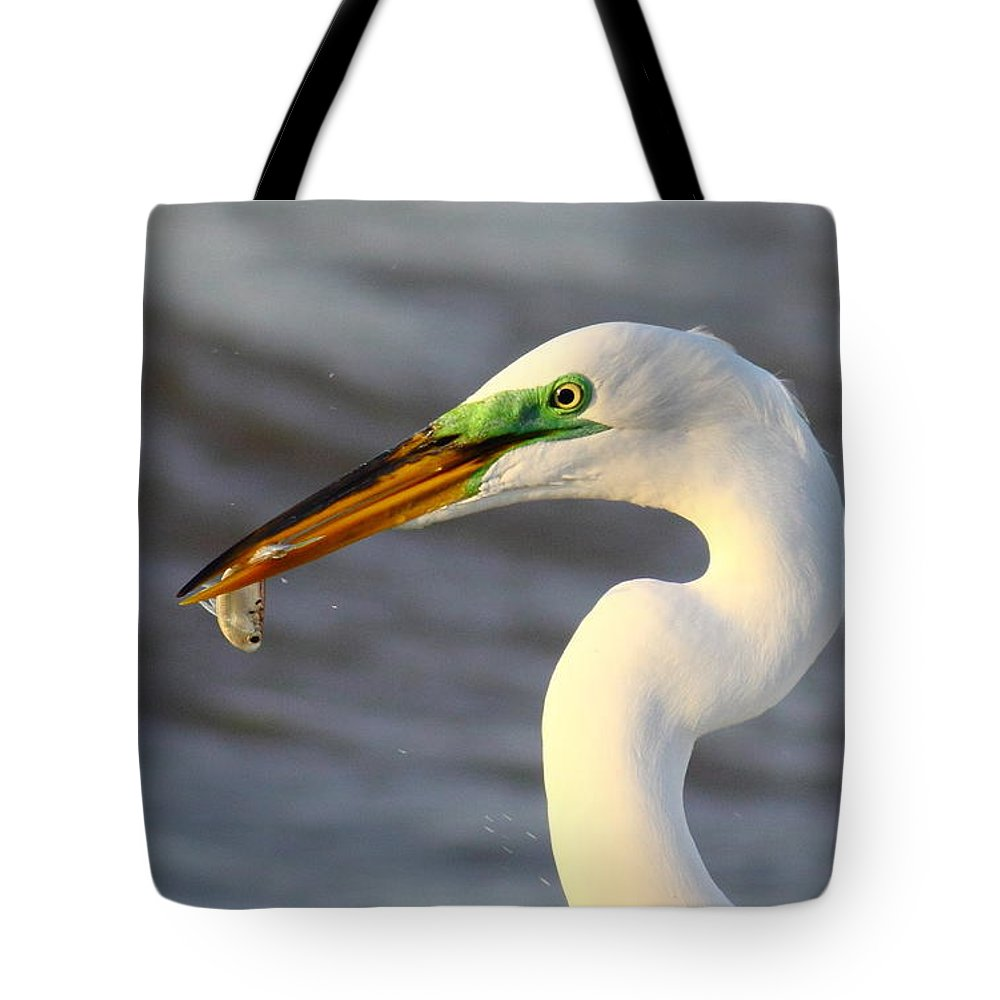 Animal Tote Bag featuring the photograph Morning's Catch by Robert Frederick