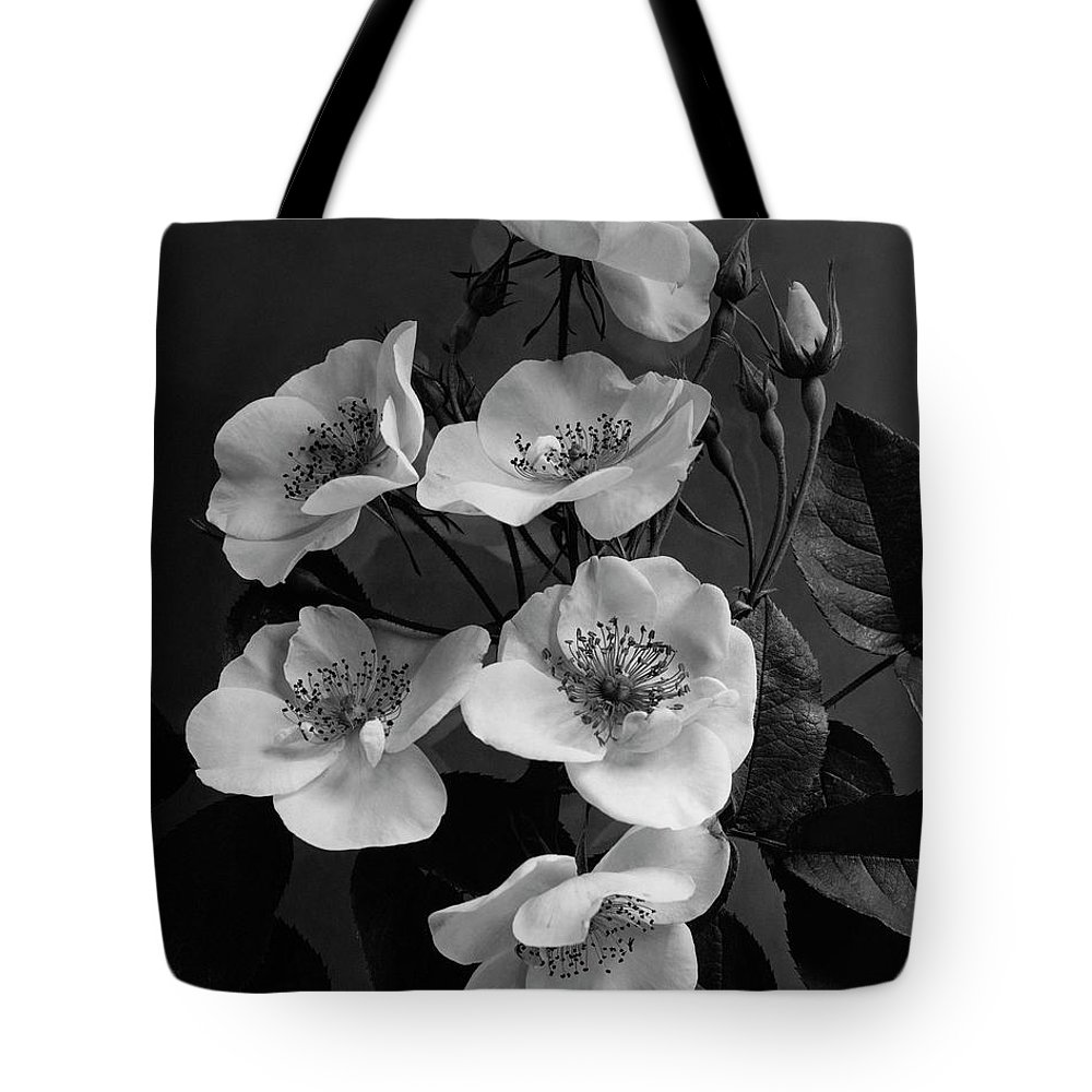 Flowers Tote Bag featuring the photograph Moschata Alba by J. Horace McFarland