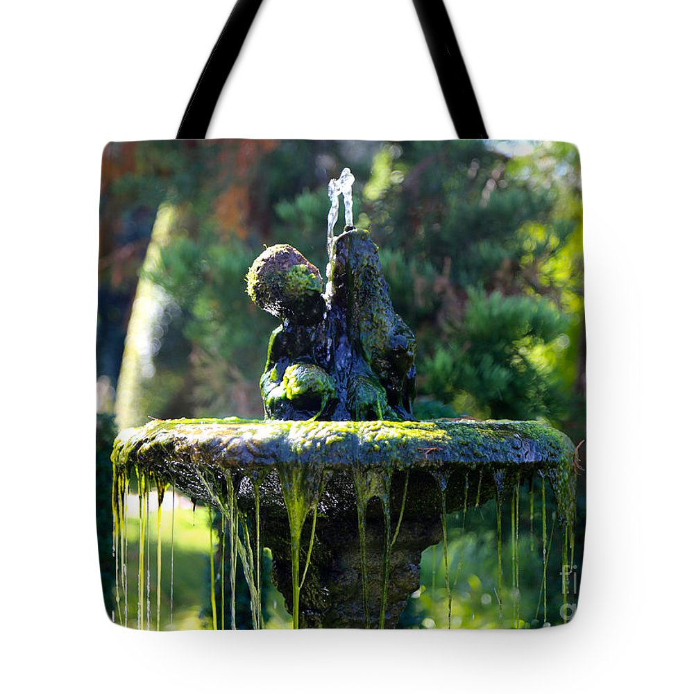 Fountain Tote Bag featuring the photograph Mossy Fountain by Carol Groenen