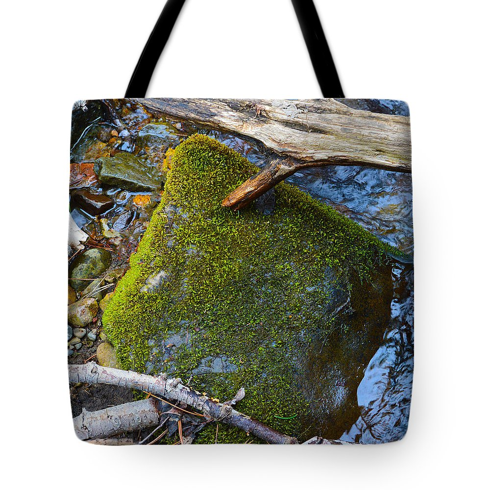 Nevada Tote Bag featuring the photograph Mossy Rock by Brent Dolliver