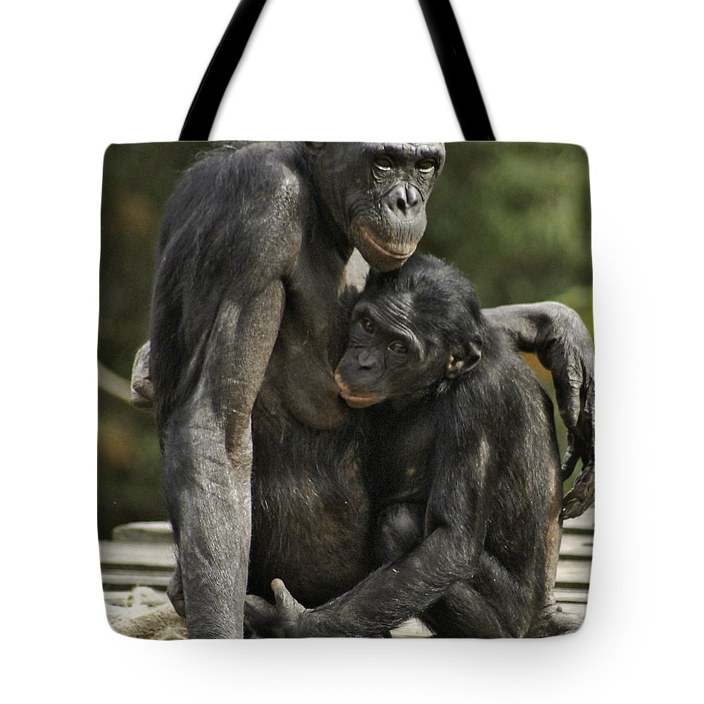 Bonobo Tote Bag featuring the photograph Mother And Child by James Ekstrom