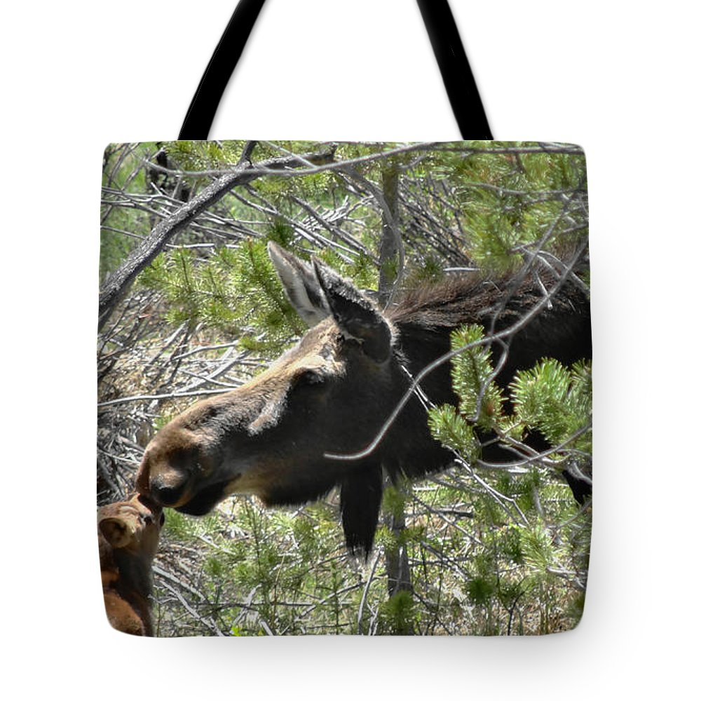 Moose Tote Bag featuring the photograph Motherly Love by Dan Sproul