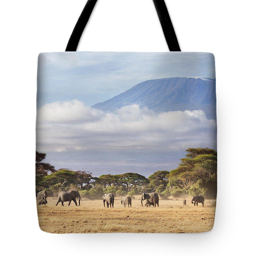 Nis Tote Bag featuring the photograph Mount Kilimanjaro Amboseli by Richard Garvey-Williams