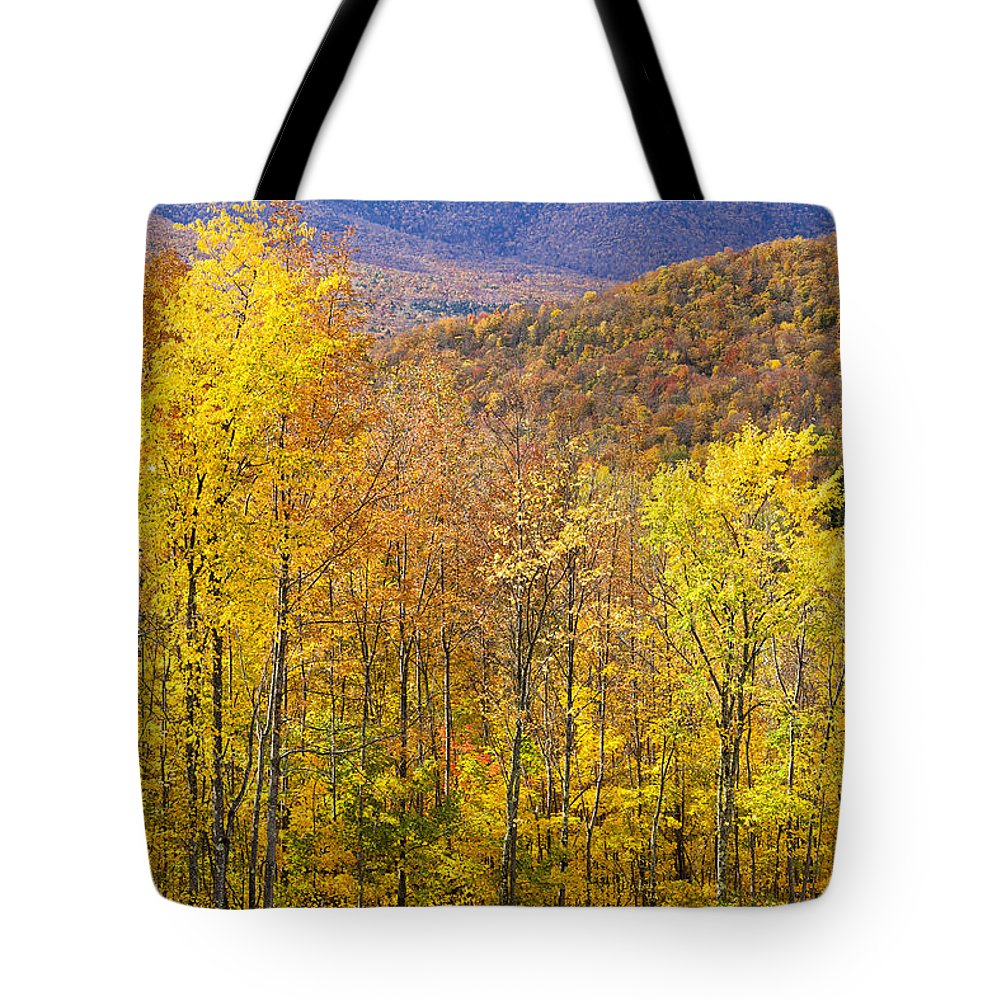 Fall Tote Bag featuring the photograph Mountain Autumn by Alan L Graham