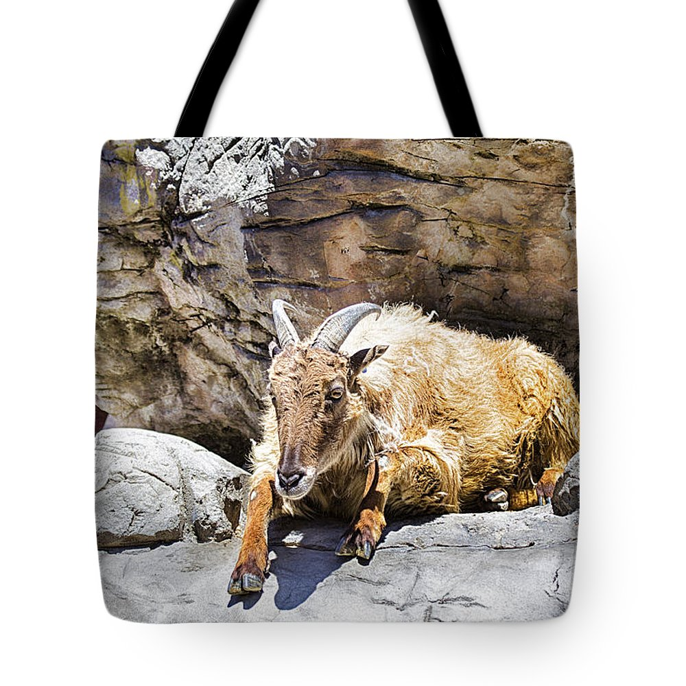 Mountain Goat Tote Bag featuring the photograph Mountain Goat by Douglas Barnard