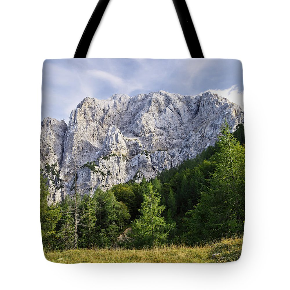 Peak Tote Bag featuring the photograph Mountain Scene by Ivan Slosar