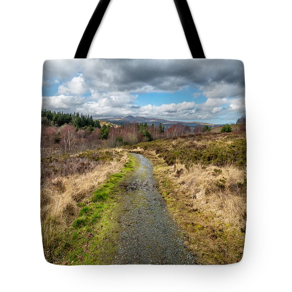 Carneddau Tote Bag featuring the photograph Mountain View by Adrian Evans