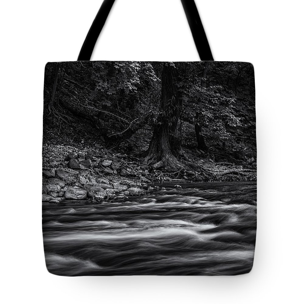 Www.cjschmit.com Tote Bag featuring the photograph Moving Still by CJ Schmit