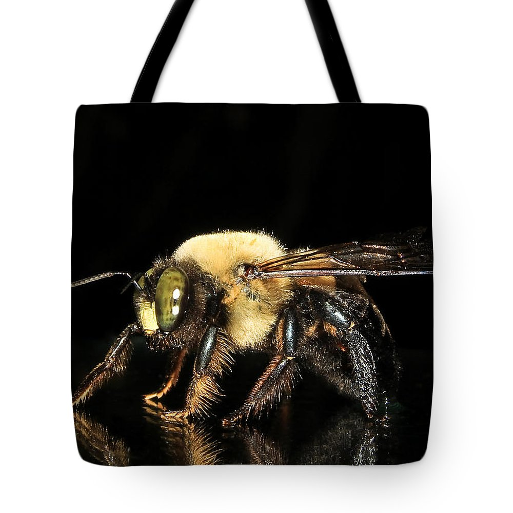Carpenter Bee Tote Bag featuring the photograph Mr. Carpenter...remodeling Service by Tammy Schneider