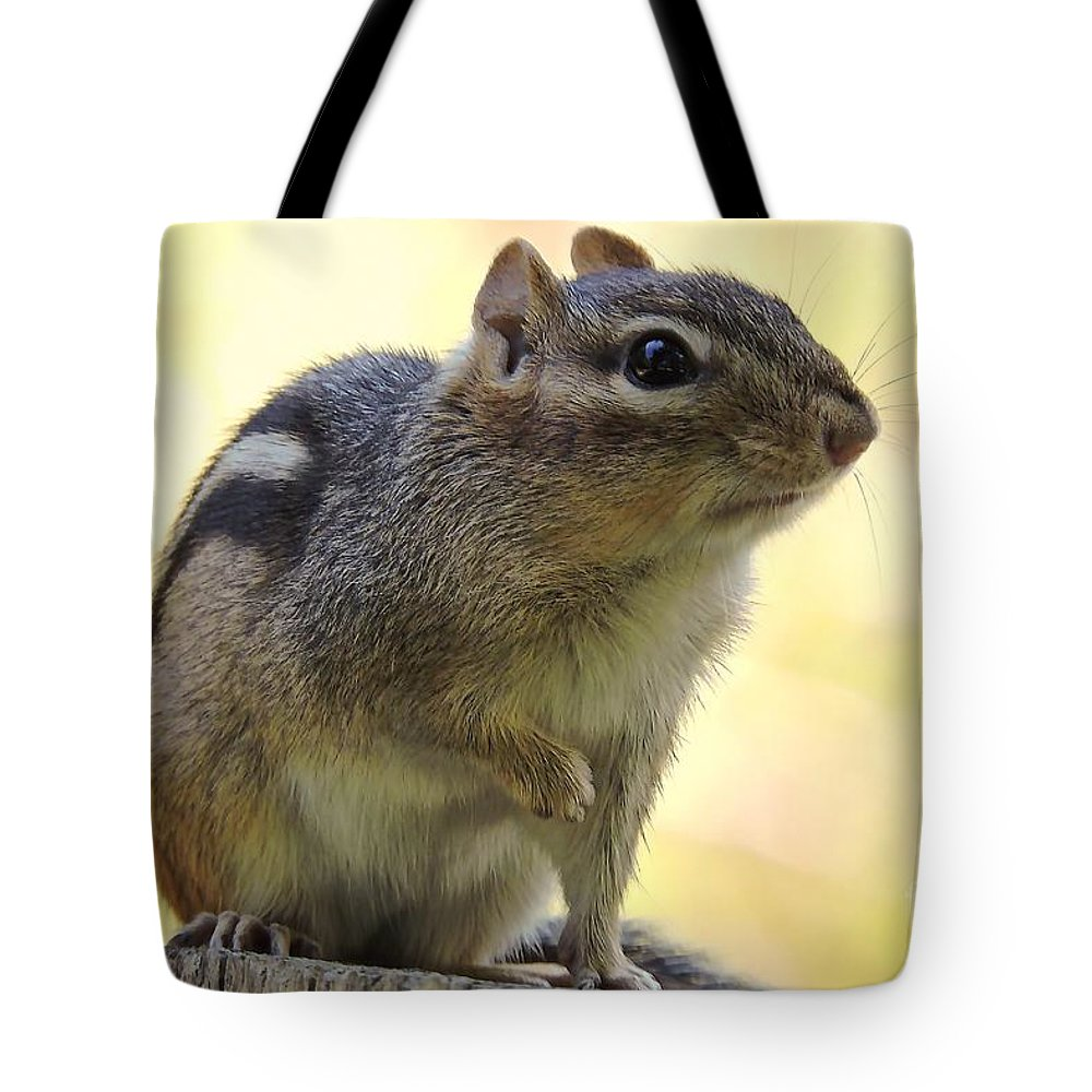 Chipmunk Tote Bag featuring the photograph Mr. Chips by Tami Quigley