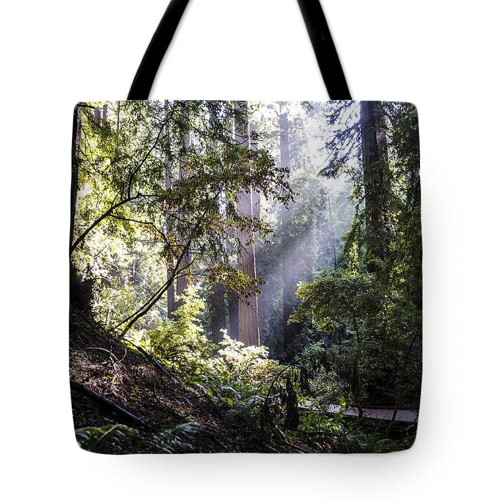 Bay Area Tote Bag featuring the photograph The Forgotten Path by Gej Jones