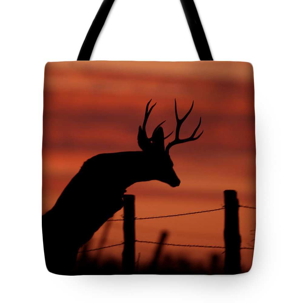 Mule Tote Bag featuring the photograph Mule Deer Buck Jumping Fence At Sunset by Gary Langley