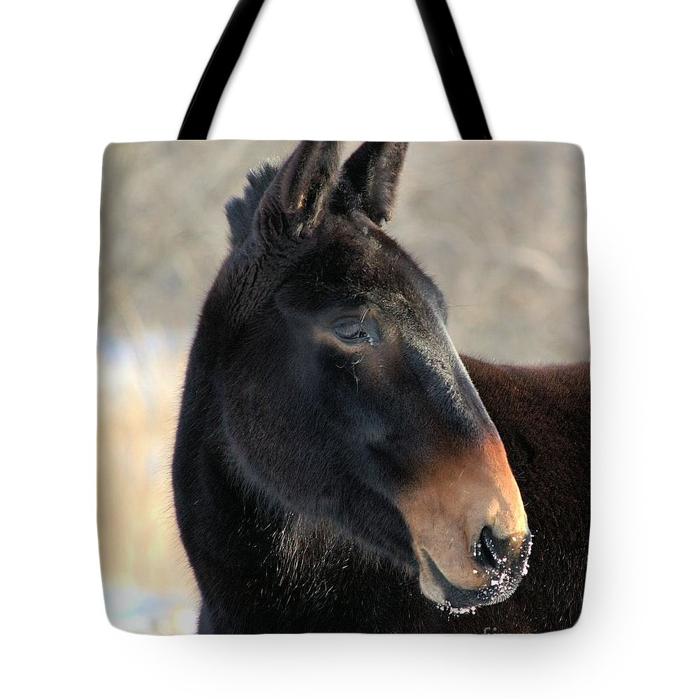 Agriculture Tote Bag featuring the photograph Mule Portrait 2 by Bonfire Photography