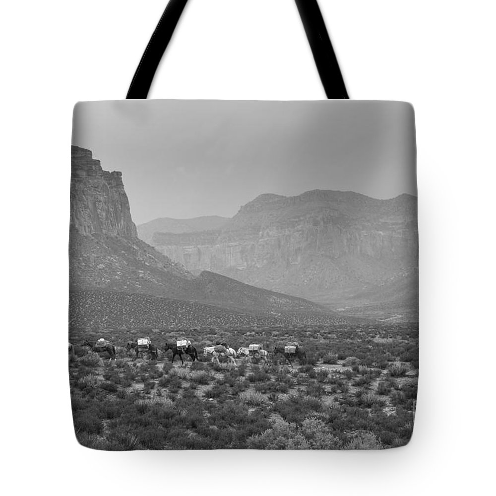 Arizona Tote Bag featuring the photograph Mule Train by Nicholas Pappagallo Jr