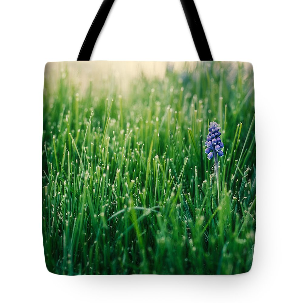 Muscari Tote Bag featuring the photograph Muscari Or Grape Hyacinth by Mary Smyth