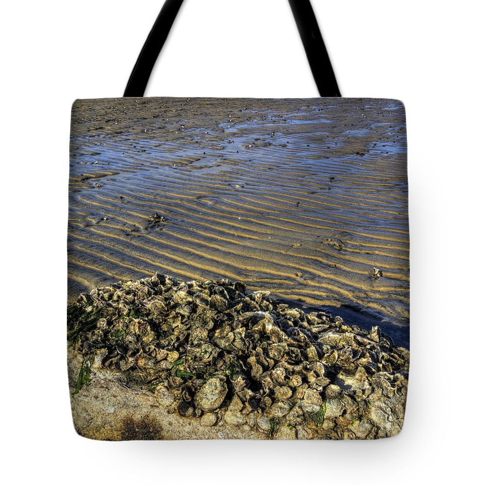 Beach Tote Bag featuring the photograph Muscle Beach by David Dufresne