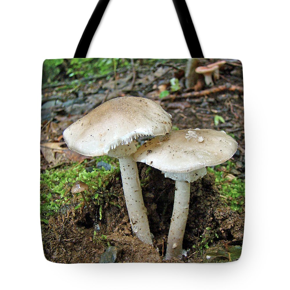 Mushrooms Tote Bag featuring the photograph Mushroom Twins - All Grown Up by Mother Nature