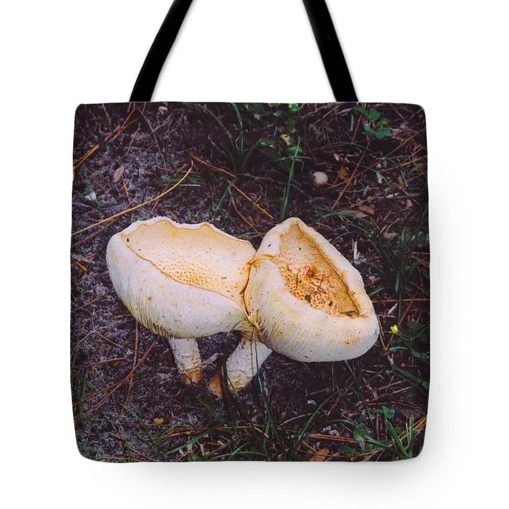 My Yard Tote Bag featuring the photograph Mushrooms by Robert Floyd