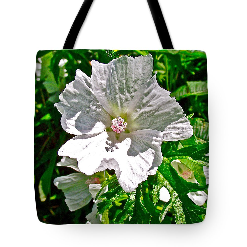 Musk Mallow Along Trail To Cap Gaspe In Forillon National Park Tote Bag featuring the photograph Musk Mallow Along Trail To Cap Gaspe In Forillon National Park-quebec by Ruth Hager